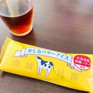 ■新セミナーのレジュメ完成&かじるバターアイス