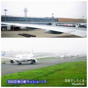 羽田空港の朝ラッシュ