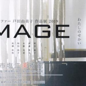 戸田由美子女史|IMAGE