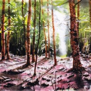 西森 靖徳氏|自然体で描いたスケッチ画の数々