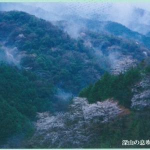 日本風景写真協会香川支部写真展 vol.19