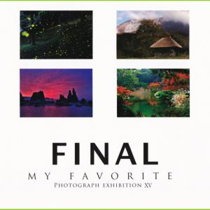 MY FAVORITE vol.15
