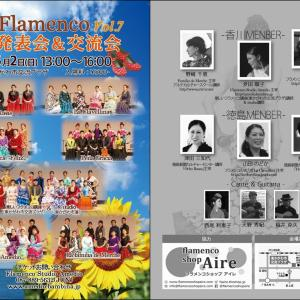 香川&徳島 Flamenco presentation & exchange meeting vol.7