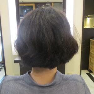 新しい縮毛矯正をして2週間後(*^-^*)