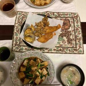 今宵はマーボー豆腐に