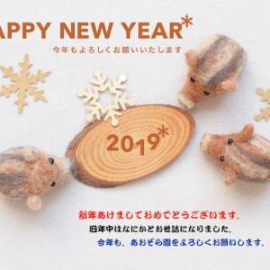 2019年 明けましておめでとうございます