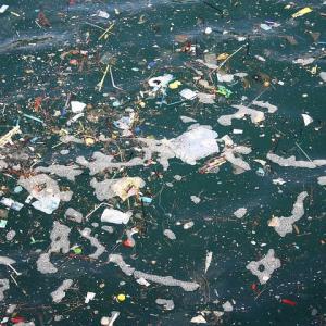 海洋プラスチックゴミ問題