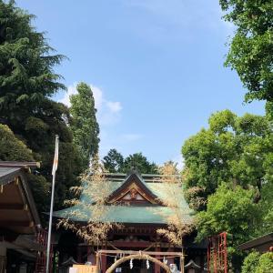 一足早い 夏越の大祓 茅の輪くぐり先日、遅めの15日詣りをしようと神社へ行くと...