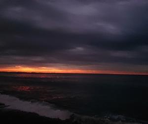 11月13日 朝釣は「凪釣行」