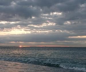 11月20日 朝釣は「案の定」