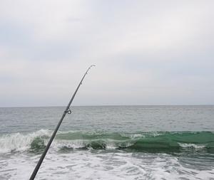 200621 魚は沢山いた夕方釣行
