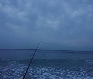 200622 小雨降る朝釣行