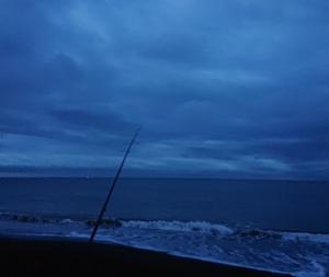 200716 久しぶりに食らった朝釣行