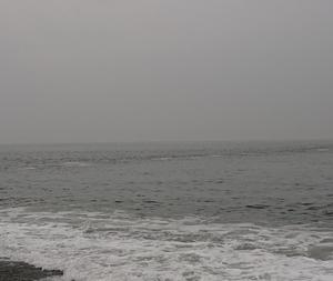 200725 「潮の変化」?の朝釣行