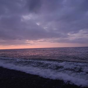 200803 サバの回遊と「またお前か!」の朝釣行