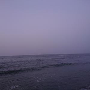 200805  「諦めない心」の朝釣行