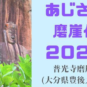 【大分 あじさい】普光寺磨崖仏2021~落ち着くきれいな空間☆~