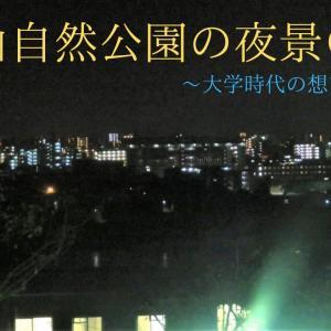 立田山自然公園の夜景@熊本~大学時代の想い出トーク~