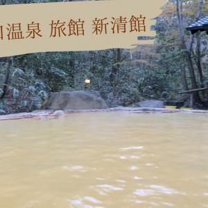 【大分】筌の口温泉  旅館 新清館@九重~歴史ある宿と黄土色の湯~