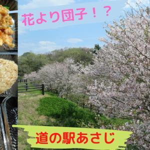 桜2020@道の駅あさじ~#春は必ず来る~