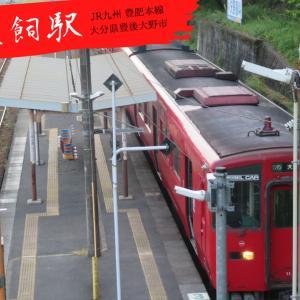 【JR九州】豊肥本線:犬飼県道踏み切りにて~220DC系~