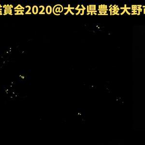 ホタル&光るキノコ!?~なないろベース10期6月定例会~