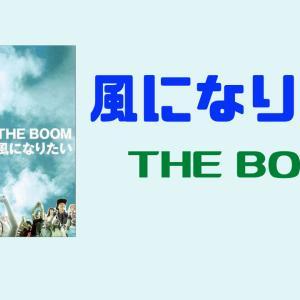 【カラオケ】THE BOOM、TUBE