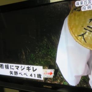 篠栗八十八箇所6~ゴリパラ見聞録~