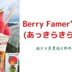 【大分スイーツ】Berry Farmer's Kitchen(あっきらきら農園)~いちご!~