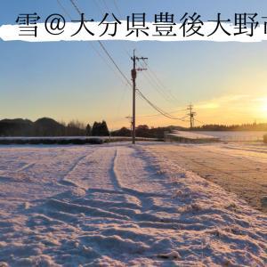 初雪2021@大分県豊後大野市