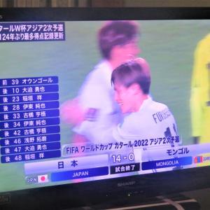 14~サッカー日本vsモンゴル~