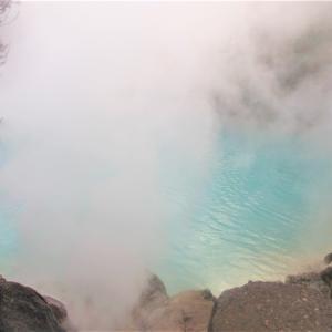 【大分別府】海地獄~青い池に大きな蓮!~