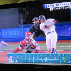【東京五輪⚾】大分の甲斐キャノン!~野球、アメリカを下す!~