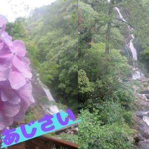 見帰りの滝あじさいまつり&相知駅@佐賀唐津~JR九州ウォーキング~