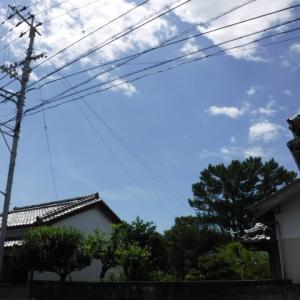 8月残暑ヒラ 1