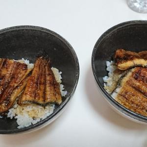 お昼ごはんは豪華にお土産のウナギ!!