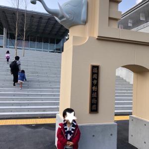 久しぶりの福岡市動物園