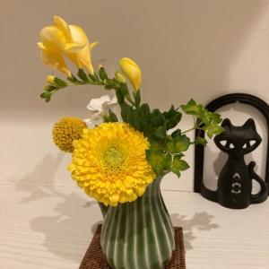 サブスクのお花、規模縮小したよ