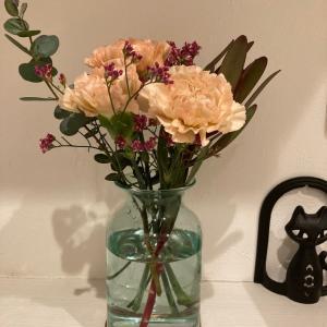 今週の花のサブスクはカーネーション