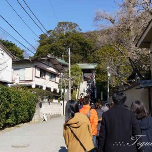 鎌倉・荏柄天神社に合格祈願