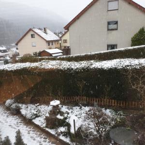 雪ゆくゆき
