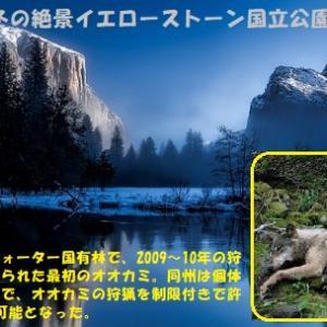 """""""動物たちの地球大移動"""" 地球と生きる/=006="""