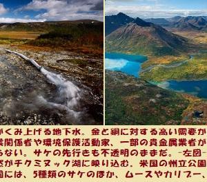 """""""アラスカの厳い選択(4/5)"""" 地球と生きる/=020="""