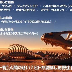 """""""両生類の絶滅危惧 (4/4)"""" 地球と生きる/=065="""
