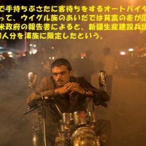 """""""中国の火薬庫・回鶻 (2/5)"""" 地球と生きる/=067="""