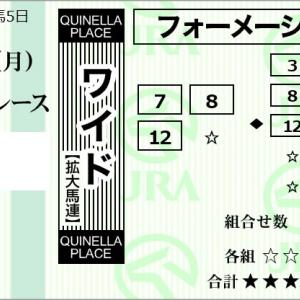 ★公開~購入馬券!★人気薄3頭からのワイド馬券で運試し!★阪神10R完結予想