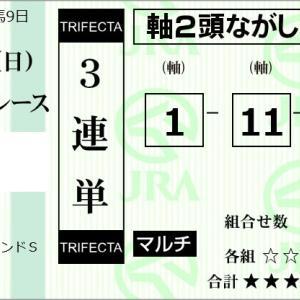 ★公開~購入馬券!★1番ロードマイウェイと11番ストーミーシーに期待!★阪神11R完結予想