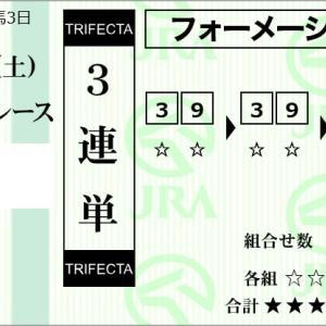 ★公開~購入馬券!★3番ププッピドゥVS9番サルサレイア!★京都6R完結予想