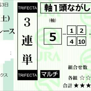 ★公開~購入馬券!★5番ワンスカイに期待!3連単36点勝負!★京都9R完結予想