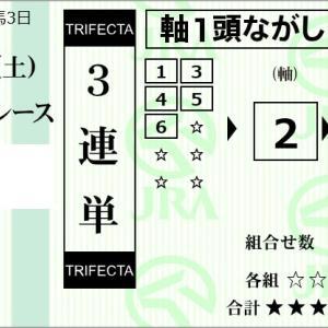 ★公開~購入馬券!★この馬場で2番ソシアルクラブは何かに足元をすくわれる!★京都10R完結予想